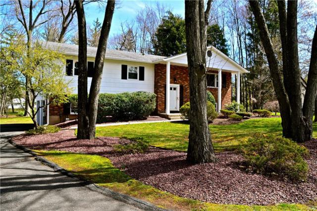 5 Sandpiper Drive, West Nyack, NY 10994 (MLS #4914658) :: William Raveis Baer & McIntosh