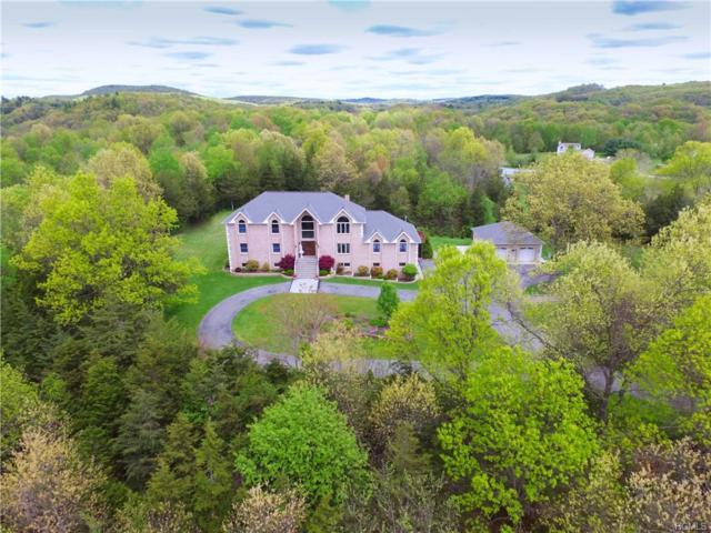 11 Ridgeview Lane, Pleasant Valley, NY 12569 (MLS #4914676) :: Mark Seiden Real Estate Team