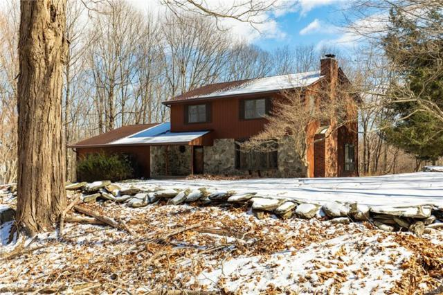 8 Halter Lane, Pleasant Valley, NY 12569 (MLS #4914715) :: Mark Seiden Real Estate Team