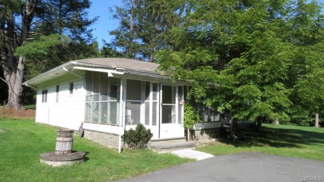 22 County Road 116, Lake Huntington, NY 12752 (MLS #4914752) :: Mark Seiden Real Estate Team