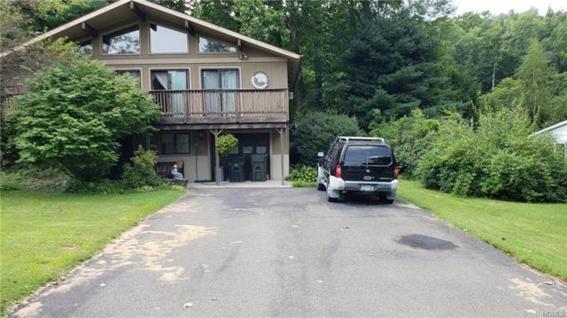 69 Church Street, Ellenville, NY 12428 (MLS #4914819) :: Mark Seiden Real Estate Team