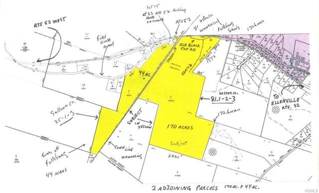 State Rte 52, Ellenville, NY 12428 (MLS #4914880) :: Mark Seiden Real Estate Team
