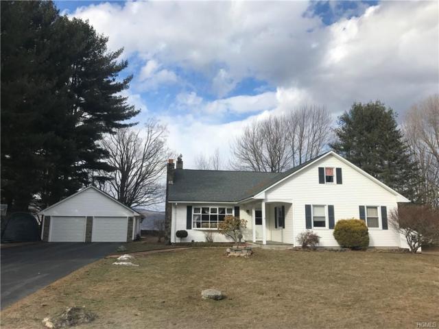 108 Hall Road, Grahamsville, NY 12740 (MLS #4914887) :: Mark Seiden Real Estate Team