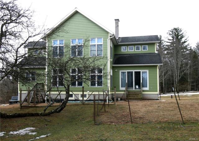 311 Mohn Road, Narrowsburg, NY 12764 (MLS #4915089) :: Mark Seiden Real Estate Team