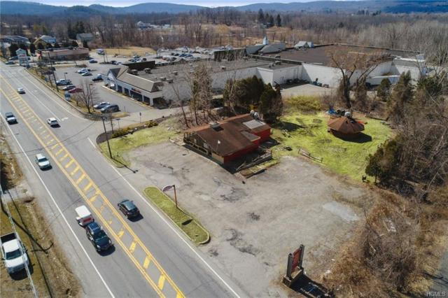 3117 Route 22, Patterson, NY 12563 (MLS #4915119) :: Mark Seiden Real Estate Team
