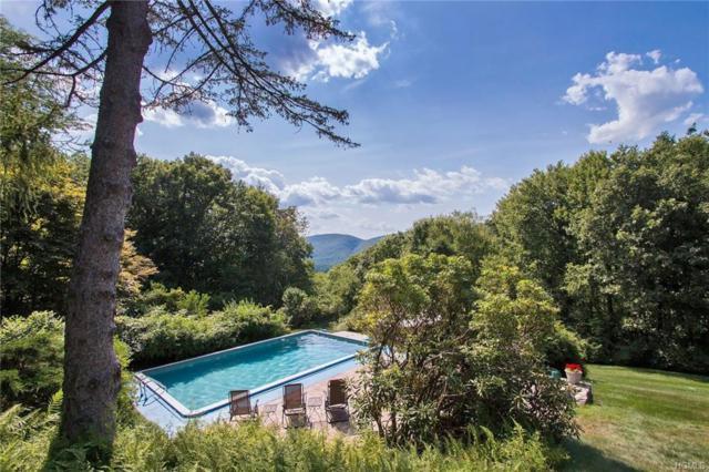 1 High Road, Cold Spring, NY 10516 (MLS #4915149) :: Mark Seiden Real Estate Team