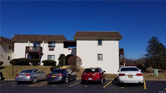 17 Village Park Drive 2C, Fishkill, NY 12524 (MLS #4915347) :: Mark Seiden Real Estate Team