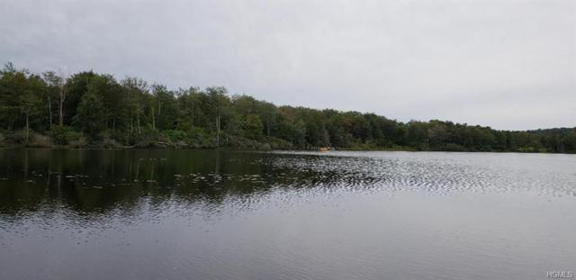 Anderson Road, Parksville, NY 12768 (MLS #4915349) :: Shares of New York