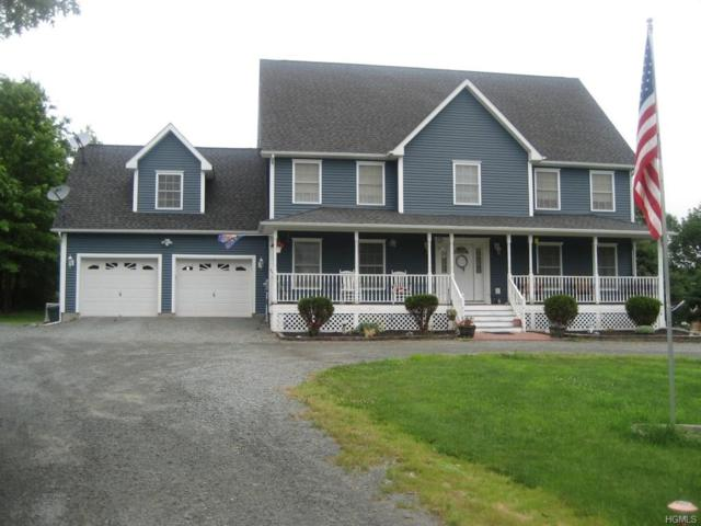 340 Hessinger Lare Road, Livingston Manor, NY 12758 (MLS #4915806) :: William Raveis Legends Realty Group