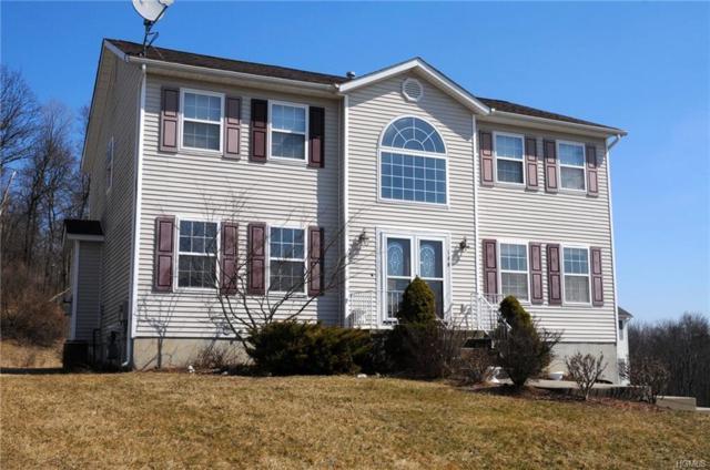 100 Anna Court, Middletown, NY 10941 (MLS #4915966) :: Mark Seiden Real Estate Team