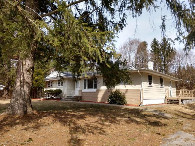 8 Mcallister Drive, Pleasant Valley, NY 12569 (MLS #4916043) :: William Raveis Legends Realty Group