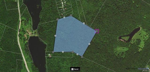 1532 Beaverkill Road, Livingston Manor, NY 12758 (MLS #4916355) :: Mark Seiden Real Estate Team