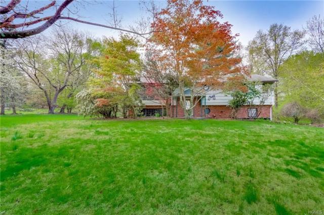 97 E Willow Tree Road, Spring Valley, NY 10977 (MLS #4916396) :: Mark Boyland Real Estate Team