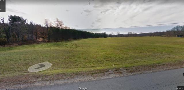 0 Mt Orange Road, Middletown, NY 10940 (MLS #4916648) :: Mark Seiden Real Estate Team