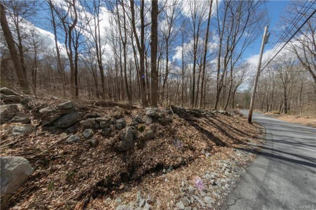 91 Sherwood Hill Road, Brewster, NY 10509 (MLS #4916696) :: William Raveis Legends Realty Group