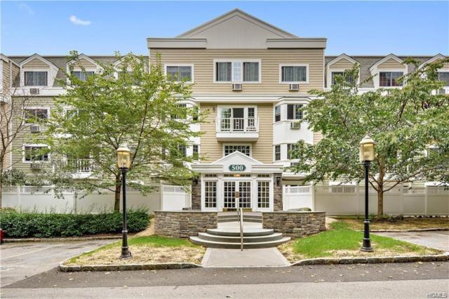 500 Pondside Drive 2D, White Plains, NY 10607 (MLS #4916733) :: William Raveis Legends Realty Group