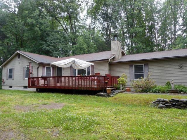 16 Mill Road, Forestburgh, NY 12777 (MLS #4917207) :: Mark Seiden Real Estate Team