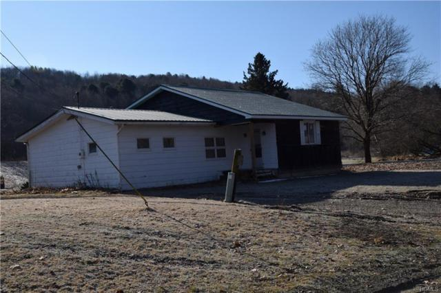 722 Blewer Rd, Other, NY 13811 (MLS #4917528) :: William Raveis Legends Realty Group
