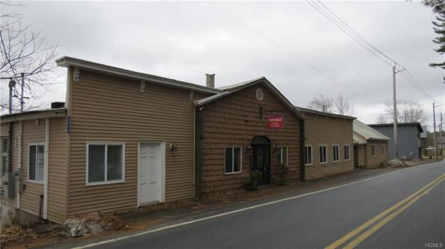 6649 State Route 52, Lake Huntington, NY 12752 (MLS #4917562) :: Shares of New York