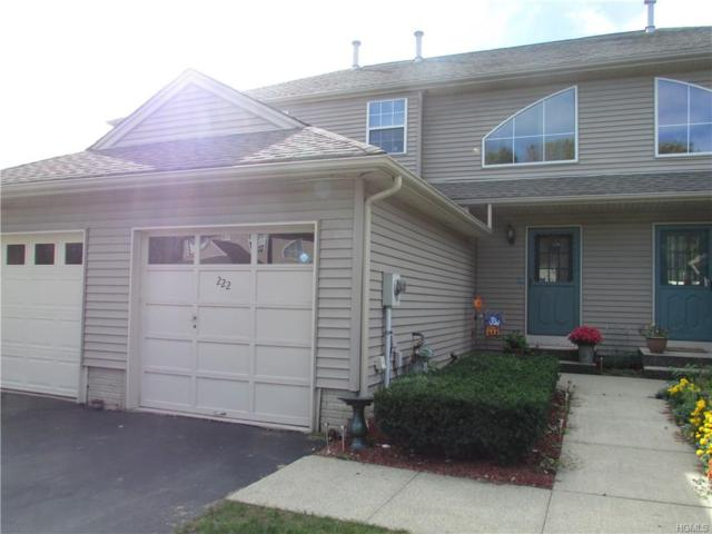 222 Crestwood Court 32-2, Fishkill, NY 12524 (MLS #4917576) :: William Raveis Legends Realty Group