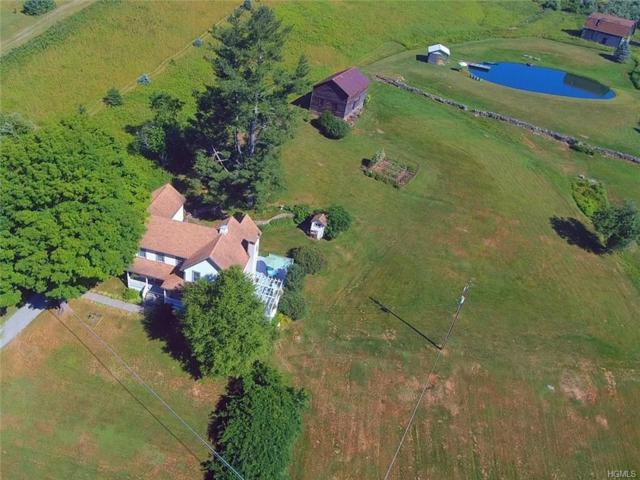 217 Griffith Road, Damascus, PA 18469 (MLS #H4917587) :: William Raveis Legends Realty Group