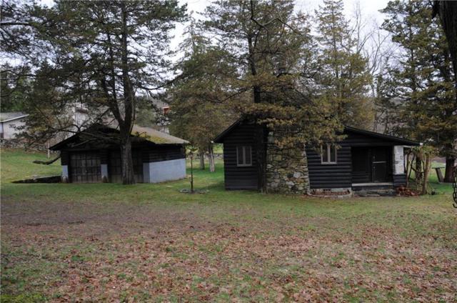 262 Canopus Hollow Road, Putnam Valley, NY 10579 (MLS #4917755) :: Mark Seiden Real Estate Team