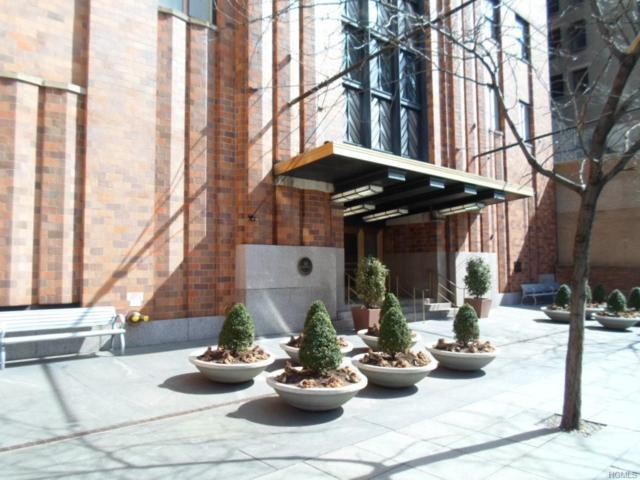 20 West Street 17A, New York, NY 10004 (MLS #4918120) :: The Anthony G Team