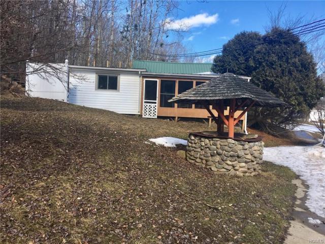 305 Little Ireland Road, Livingston Manor, NY 12758 (MLS #4918357) :: Mark Seiden Real Estate Team