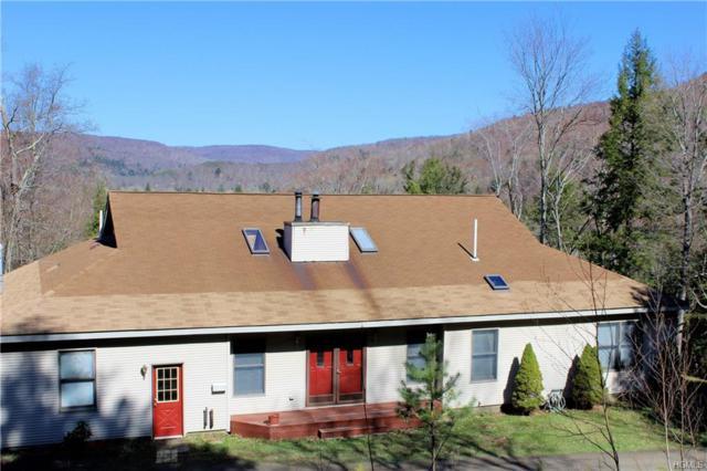 30 Yorktown Road, Roscoe, NY 12776 (MLS #4918824) :: Mark Seiden Real Estate Team