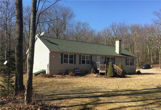 27 Lorraine Road, Forestburgh, NY 12777 (MLS #4918931) :: Mark Seiden Real Estate Team