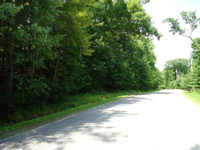TBD Otis Road, Middletown, NY 10940 (MLS #4919045) :: William Raveis Legends Realty Group