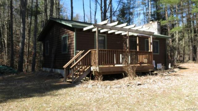 5657 Nys Route 97, Narrowsburg, NY 12764 (MLS #4919056) :: William Raveis Legends Realty Group