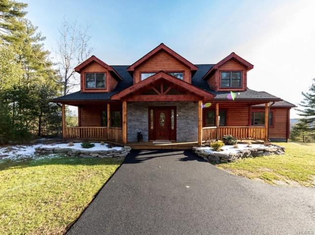 41 Corkscrew Road, Barryville, NY 12719 (MLS #4919369) :: William Raveis Legends Realty Group