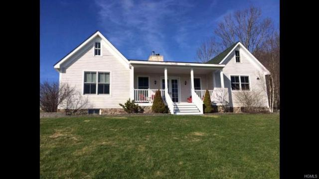 14 Callicoon Lane, North Branch, NY 12766 (MLS #4919577) :: William Raveis Legends Realty Group