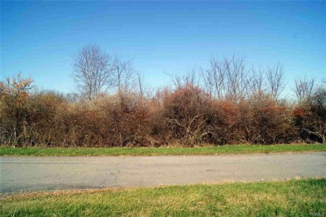 86 Jon Barrett Road, Patterson, NY 12563 (MLS #4919671) :: Marciano Team at Keller Williams NY Realty