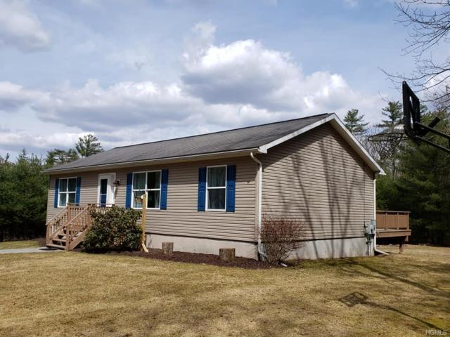 2 Summit Drive, Yulan, NY 12792 (MLS #4919748) :: William Raveis Legends Realty Group