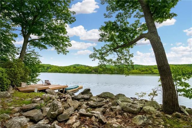 222 W Shore Drive, Putnam Valley, NY 10579 (MLS #4919811) :: Mark Seiden Real Estate Team