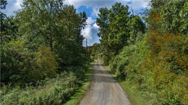 Lot 5 Cart Road, Dover Plains, NY 12522 (MLS #4919877) :: Shares of New York