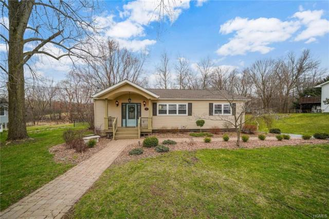 18 Bridle Lane, Chester, NY 10918 (MLS #4919923) :: William Raveis Legends Realty Group