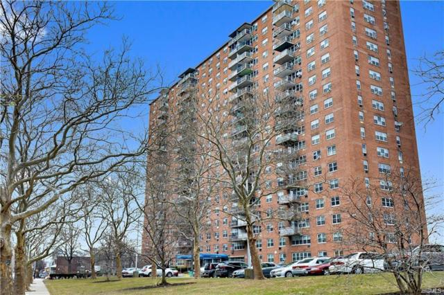 825 Morrison Avenue 11A, Bronx, NY 10473 (MLS #4919998) :: William Raveis Legends Realty Group