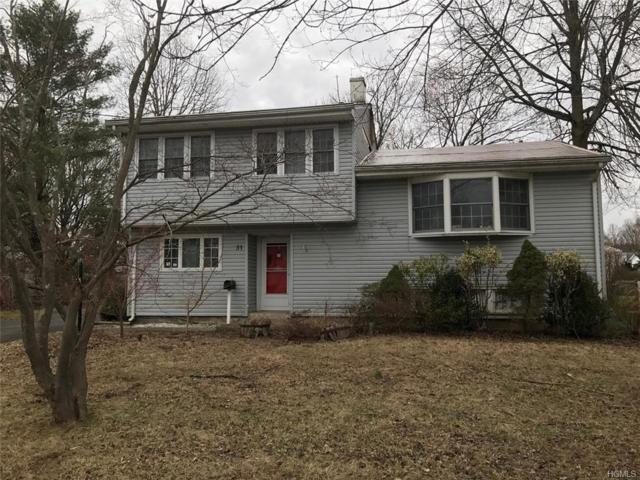 31 Dutch Hollow Drive, Orangeburg, NY 10962 (MLS #4920245) :: William Raveis Baer & McIntosh