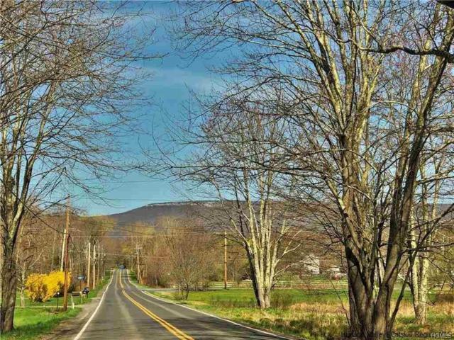 1414 Indian Springs Road, Pine Bush, NY 12566 (MLS #4920257) :: The McGovern Caplicki Team