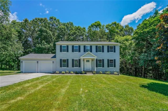 190 Forest Valley Road, Pleasant Valley, NY 12569 (MLS #4920285) :: The McGovern Caplicki Team