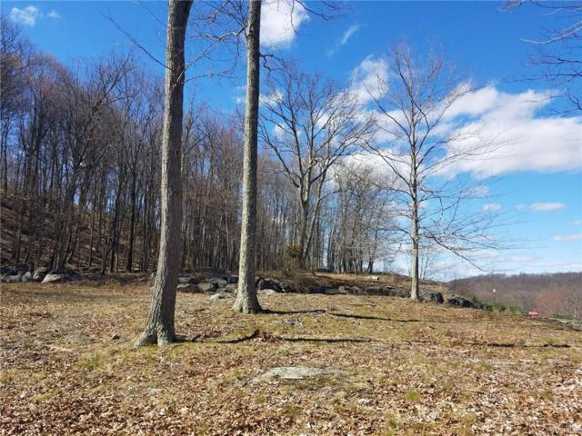 66 Ralphie Lane, Monroe, NY 10950 (MLS #4920493) :: The McGovern Caplicki Team