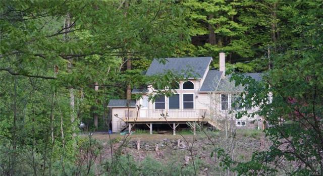 455 Peas Eddy Road, Hancock, NY 13783 (MLS #4920537) :: William Raveis Legends Realty Group