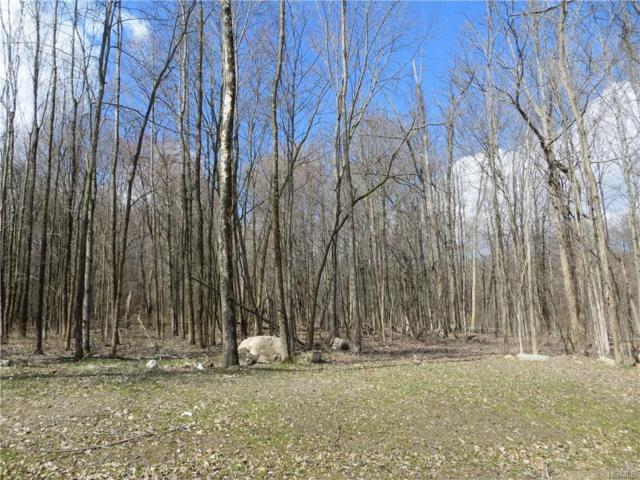 Lot 5 Green Farms Court, Montgomery, NY 12549 (MLS #4920945) :: William Raveis Baer & McIntosh