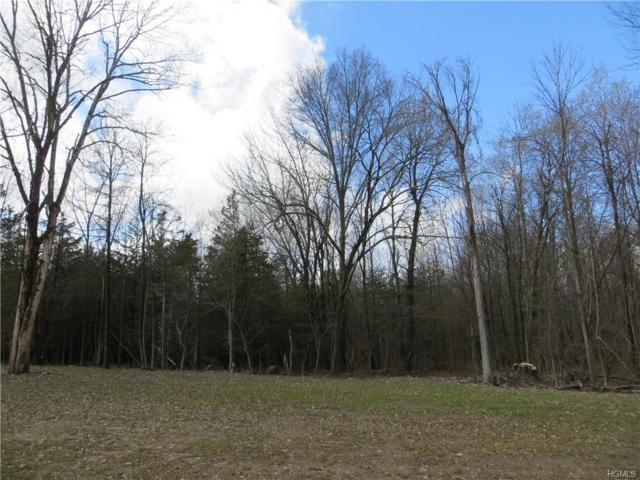 Lot 4 Green Farms Court, Montgomery, NY 12549 (MLS #4920953) :: William Raveis Baer & McIntosh