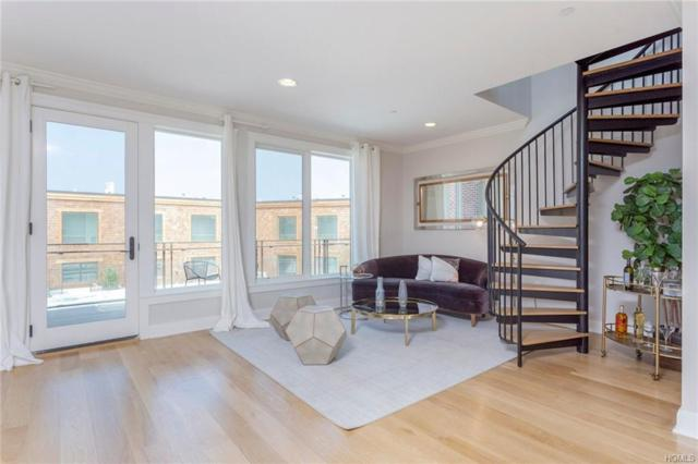 45 Hudson View Way #311, Tarrytown, NY 10591 (MLS #4921278) :: William Raveis Legends Realty Group