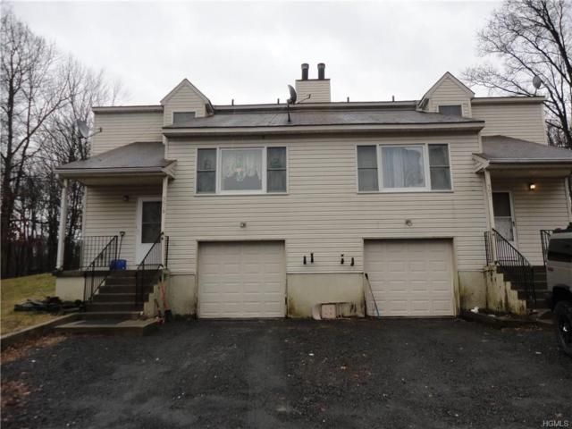 5621 Searsville Road, Pine Bush, NY 12566 (MLS #4921288) :: William Raveis Legends Realty Group