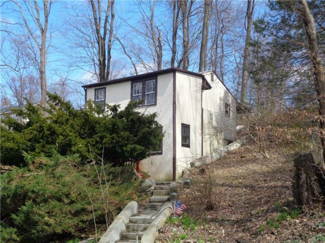 460 Lake Shore Drive, Patterson, NY 12563 (MLS #4921312) :: William Raveis Legends Realty Group